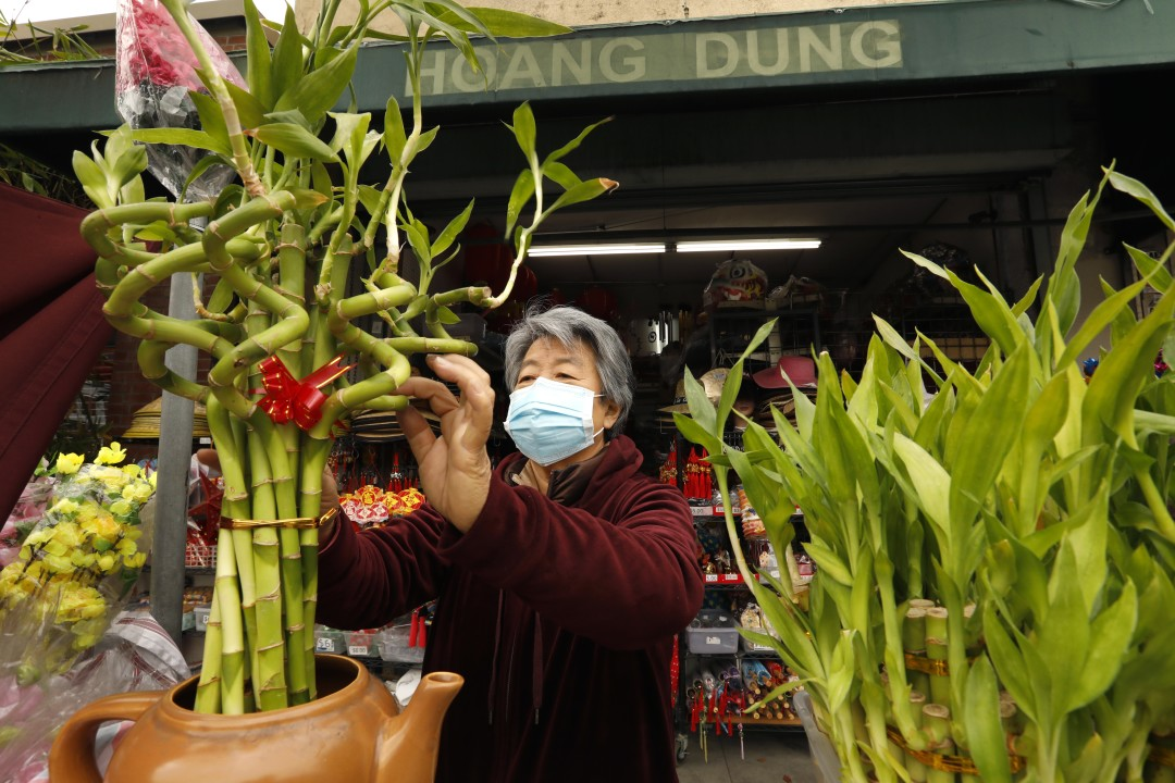 Mary Lu arranges lucky bamboo plants on sale on Feb. 10, 2021, at her shop on Broadway in Chinatown, Los Angeles. (Carolyn Cole / Los Angeles Times)