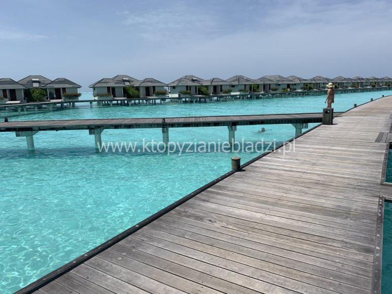Malediwy są znane m.in. z turystycznych domków na wodzie, które wkrótce mogą zostać kompletnie zalane.