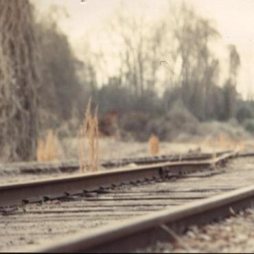 A railroad surrounded by dry brush and leafless trees.