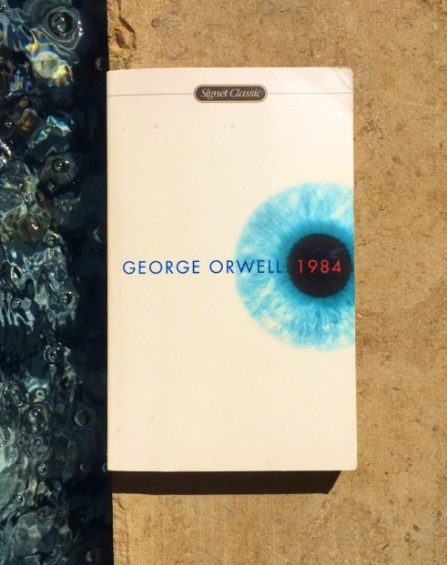 """Image of """"1984"""" book cover on the edge of the pool. There is water on one side of the cover and stone on the other."""