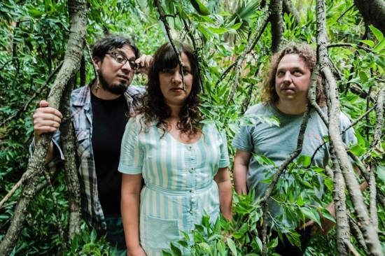 Outdoor closeup of the three members of Semihelix, surrounded by very thick underbrush.