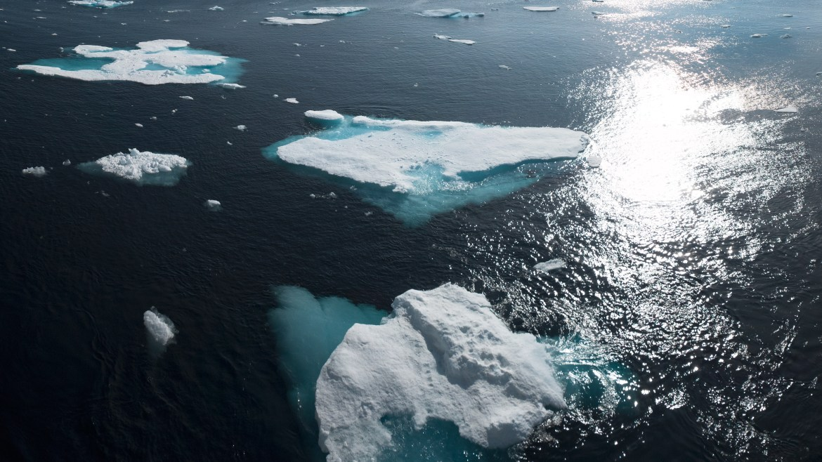 An aerial view of Greenland's ocean with icebergs and sunlight on the water