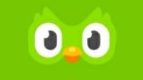 Green Duolingo Bird
