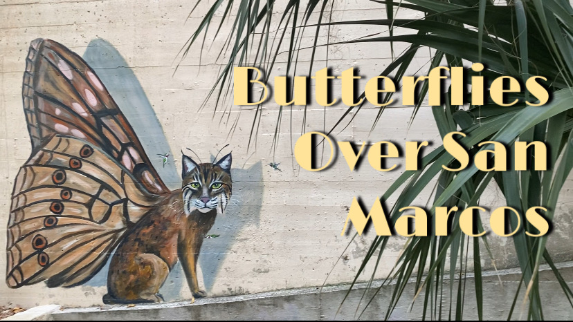 """""""Butterflies Over San Marcos"""" written over a picture of bobcat/ butterfly mural near Texas State's agriculture building"""