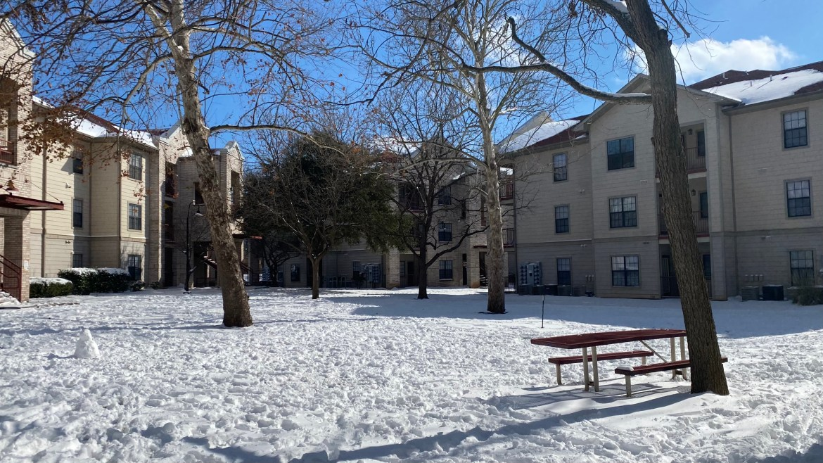 Image of the snow-covered around at bobcat village