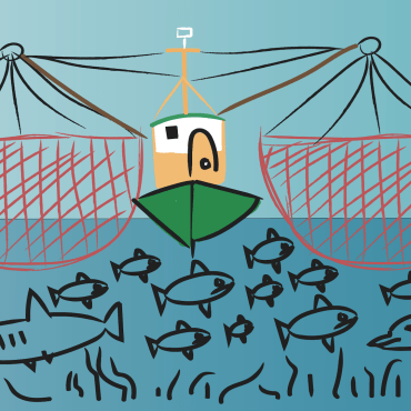 commercial fishing boat colored with fishing nets on both sides and fish and plant life below the boat