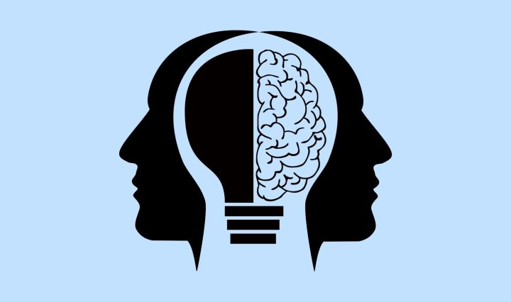 ight blue background with a black fill in illustration of two faces connected by the brain, but one side with a lightbulb and the other side with an actual brain.