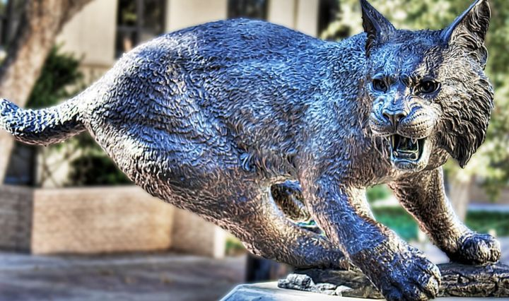 A photo of bobcat statue with trees in the background. The statue is standing on top of a pillar.