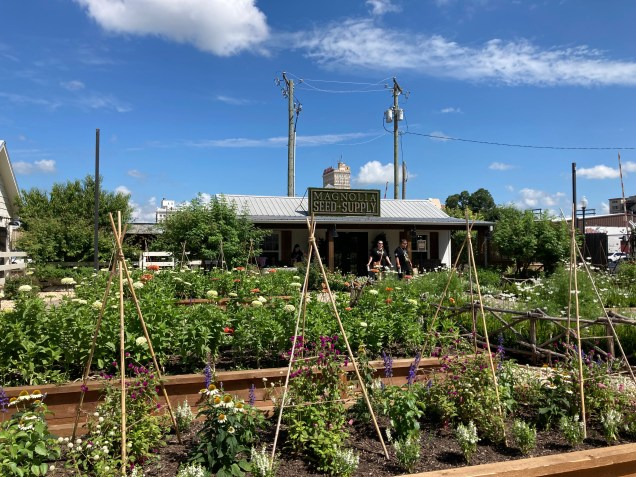 image of the garden at Magnolia Market