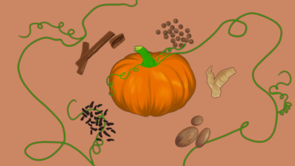 : An cartoon-style illustration of an orange pumpkin in the center of the header with green vines sprouting out of it. Around the pumpkin, the ingredients of pumpkin spice are there. The ingredients are cinnamon sticks, allspice, ginger, nutmeg, and cloves.