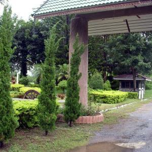 ขายที่ดิน สระบุรี  วังม่วง ติด ถ.สายบ้านหมาก-สวนมะเดื่อ 1-1-49ไร่