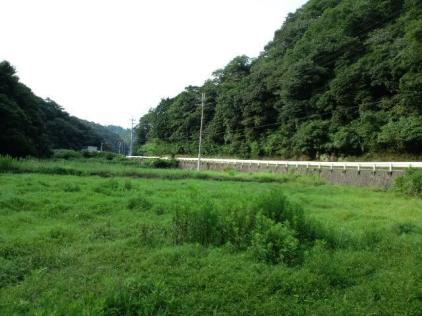 001 乗馬クラブの敷地は山に挟まれた農地でした