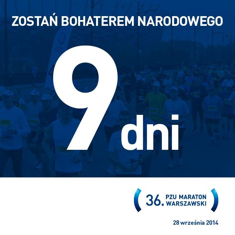 Materiały zestrony organizatora Maratonu Warszawskiego