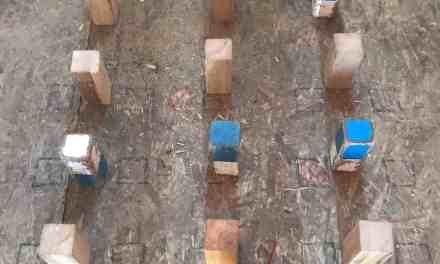 Skill Builder Wednesday: Week Seven