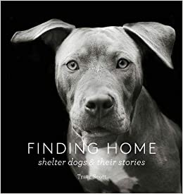 Finding Home Shelter Dogs and Their Stories (A photographic tribute to rescue dogs) (9781616893439) Scott, Traer