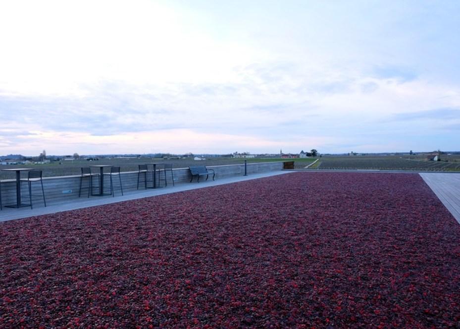 kucuk martha- saint emilion - la terrase rouge 4