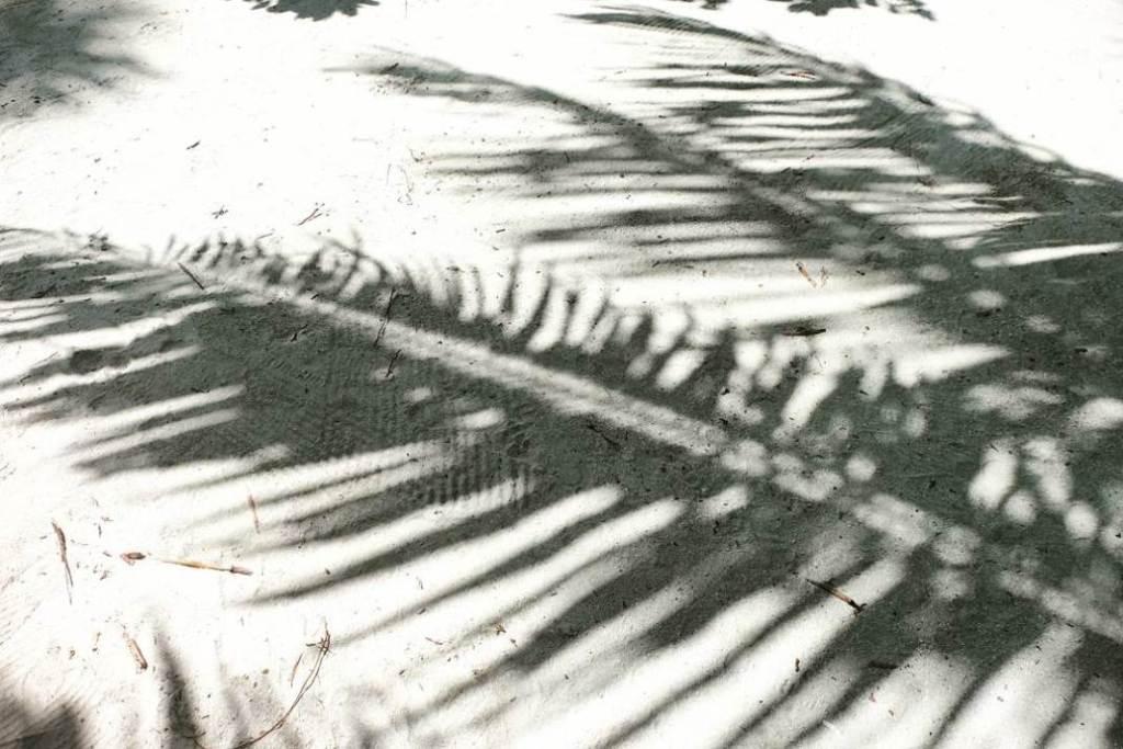 kucuk-martha-maldives-maldivler-kurumba-maldives-26