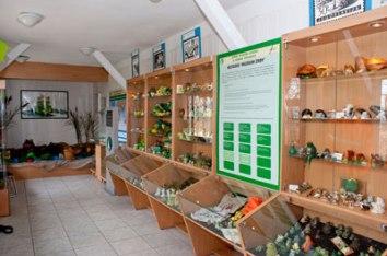 Muzeum Żaby