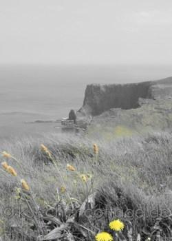 Cliffs of Moher (19)