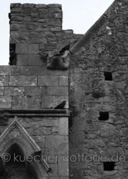 Rock of Cashel (8)