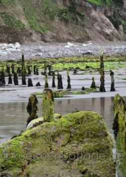 Rossbeigh Beach  (5)