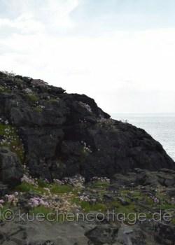 Westküste (4)