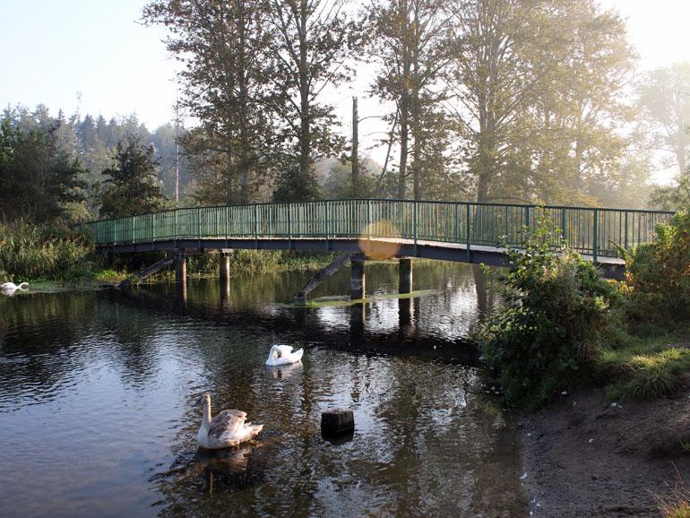 Brenner Moor Grüne Brücke1