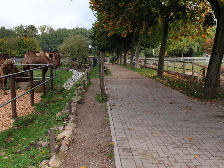 Tierpark Krüzen 1