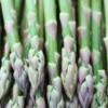 asparagus 28