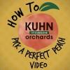Web Recipe Tile - Pick Perfect Peach