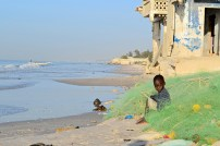 Because of foreign illegal and overfishing local fish stocks started to decline rapidly in Senegal around 2000.