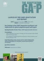 Adaptation Gap Flyer