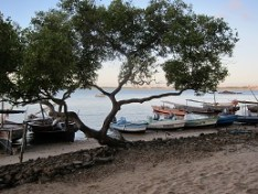 fishing boats on Lamu