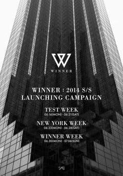winner launching plan