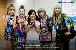 megan lee and 2ne1
