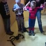 Spinnenrennen