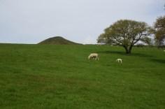 Wandern mit Blick auf den Sogar Loaf