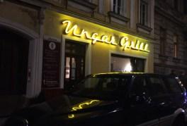 Ungar Grill Kopie