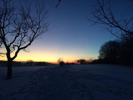 Spaziergang über die Steinhofgründe in der Abenddämmerung