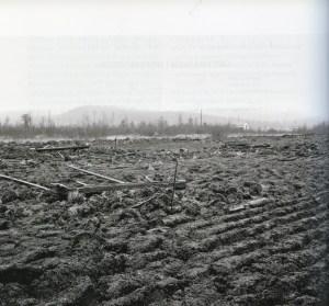 Fyndplatsen i Skatamark 1932. © Norrbottens museum
