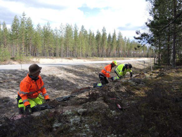 Carina, Åsa och Olof gräver © Norrbottens museum