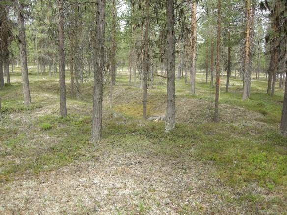 En av de tolv jordrymningarna. ©Norrbottens museum. Foto Olof Östlund
