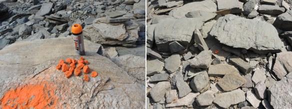 Sprayade och numrerade stenar placerades ut över undersökningsområdet och mättes in. Det återstår att se om vi hittar igen dem om vi kommer tillbaka!