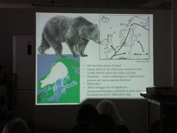 En ögonblicksbild från osteologen Erika Rosengrens bildspel, med intresserad publik i Blankaholm. Foto Olof Östlund