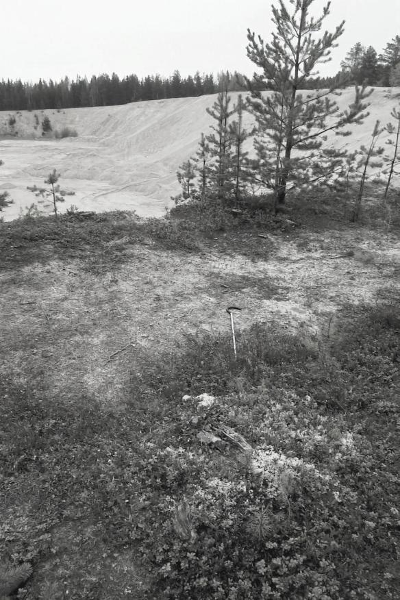 Raä Överluleå 321:1, en härd var en av få lämningar som påträffades sommaren 2000 som som var oskadade. Jordsonden ligger över härden. I sandtäkten intill härden påträffades under 1940-talet resterna efter en grav från vikingatid, det så kallade Brotjärnsfyndet. Fyndet bestod av ett 40-tal bronsbeslag som troligtvis varit fästade vid ett bälte, en glaspärla, en silverring, järn- och tygfragment samt resterna efter ben och tänder från en obränd människa. Liknande fynd har gjorts i sydvästra Finland. Foto Olof Östlund ©Norrbottens museum