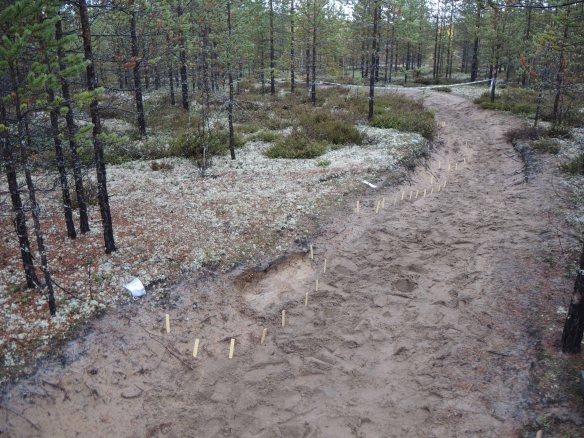 2018_1, Arkeologisk räddningsundersökning, Kälsjärv, Kalix