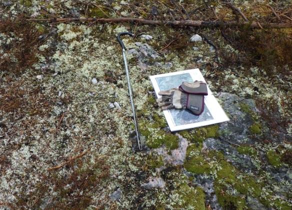 Kvarts i ett av kvartsbrotten. Foto: Olof Östlund, Skellefteå museum