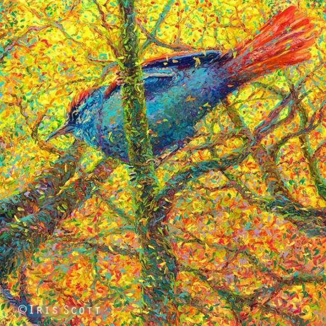 Птица. Автор: Iris Scott.