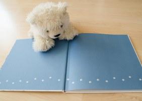 Wo ist Nils der Eisbär (6)
