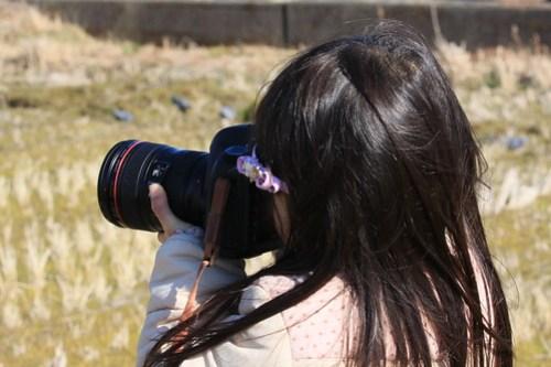 500系新幹線撮影